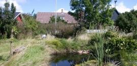 Loekker Garten mit Teich